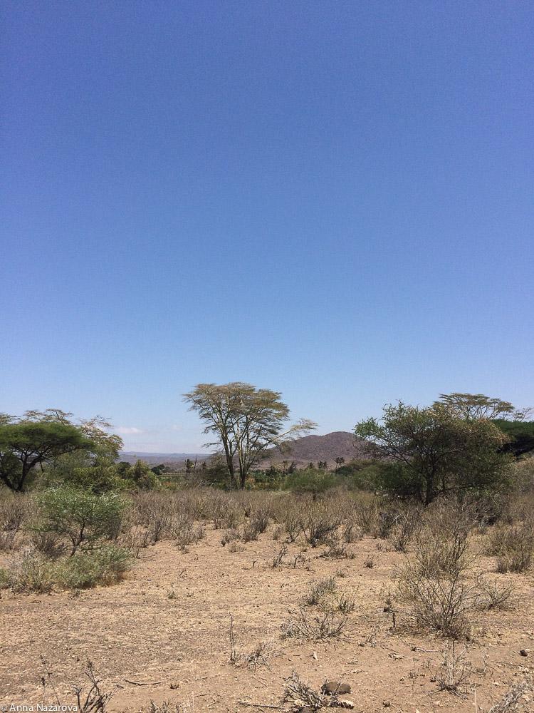 Landscape Lake Eyasi