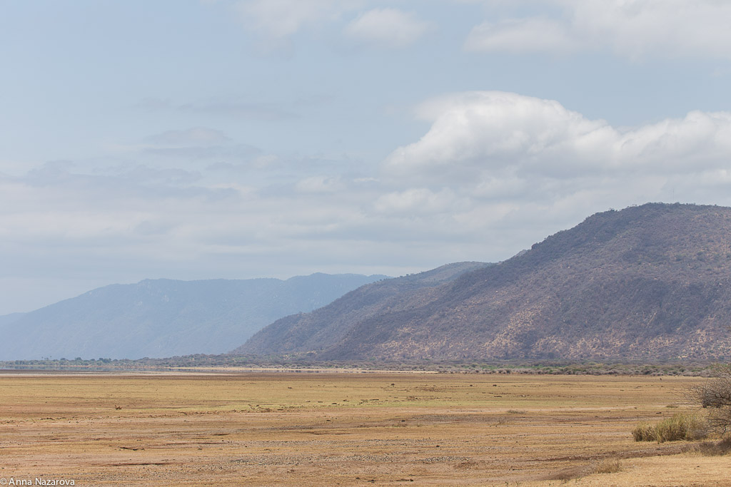 Landscape in Lake Manyara