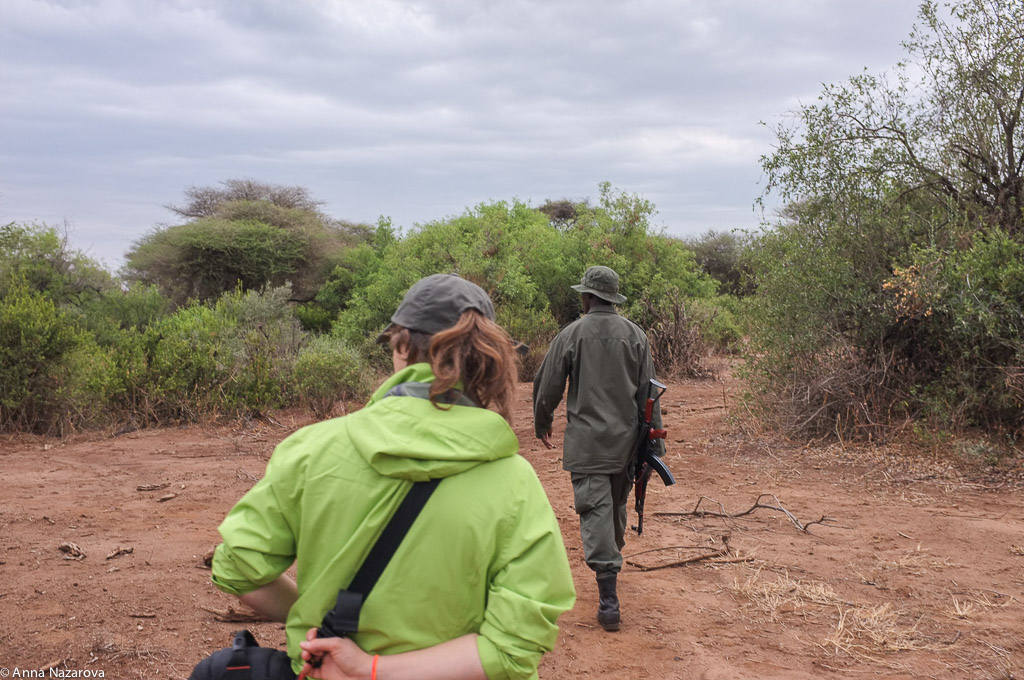 Walking safari in Lake Manyara