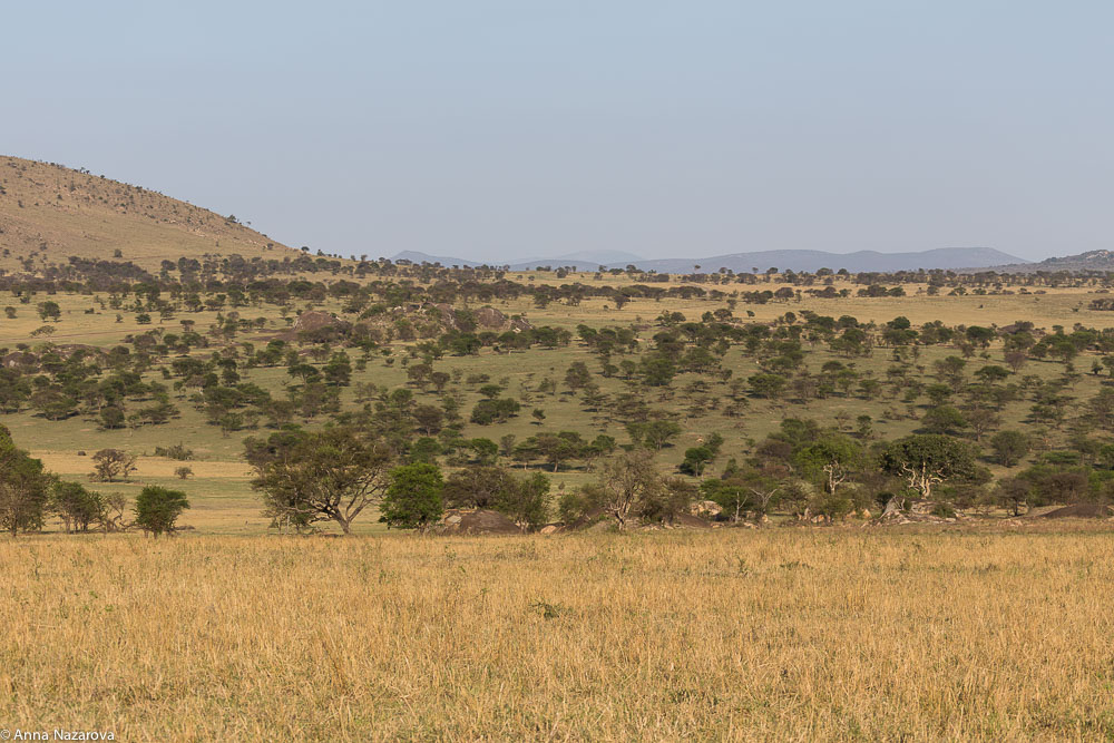 landscape northern serengeti